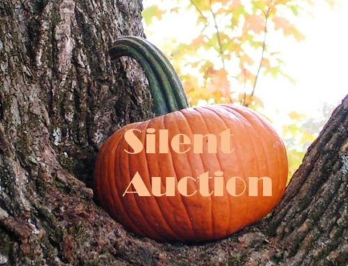 OARS for Vets Silent Auction – 2016